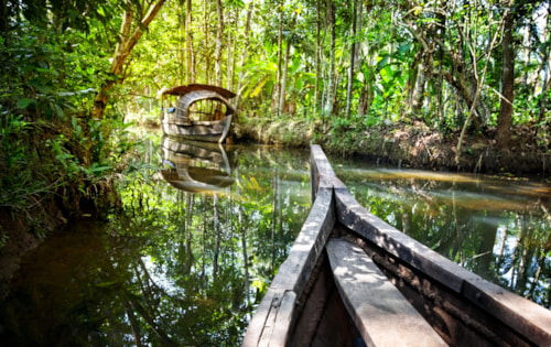 Wooden boat cruise in backwaters jungle in Kochin, Kerala, India