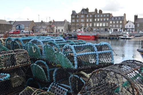 Crab creels in the fishing harbour of Kirkwall, capital of Orkney (Scotland)
