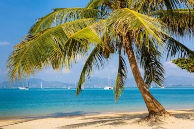 Region Karibik