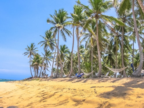 Playa Rincon is located about 25 kilometers from the Port of the Town of Samana. The spectacular, wild and remote Caribbean beach of Playa Rincon is one of the most beautiful in Dominican Republic