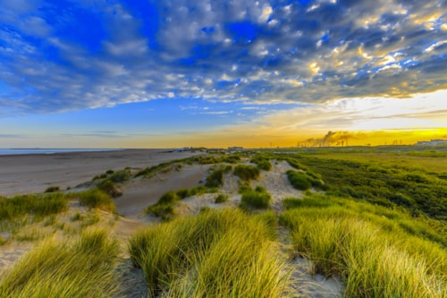 Meer und Dünen bei IJmuiden